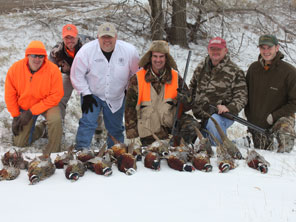 Guided Pheasant Hunts